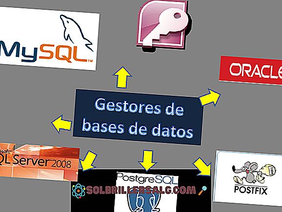 Bases: caractéristiques et exemples