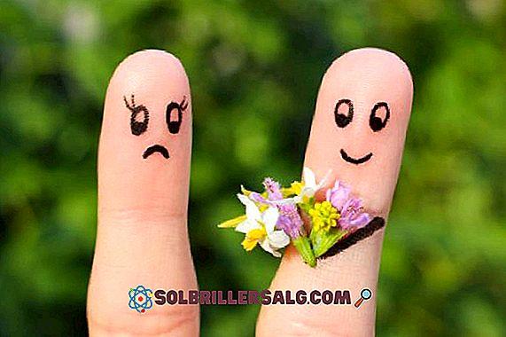 Filophobie (peur de tomber amoureux): symptômes et traitement