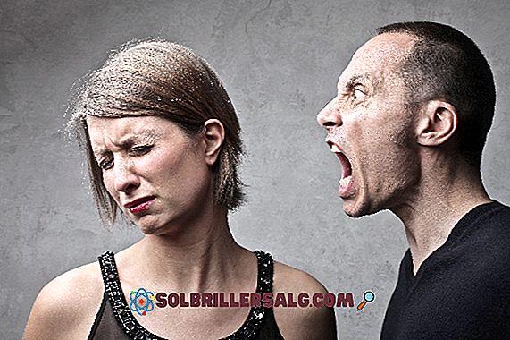 Psychologische Belästigung: Merkmale, Typen und Profile