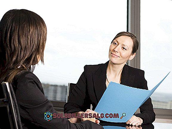 Colloquio di lavoro: 13 consigli per avere successo