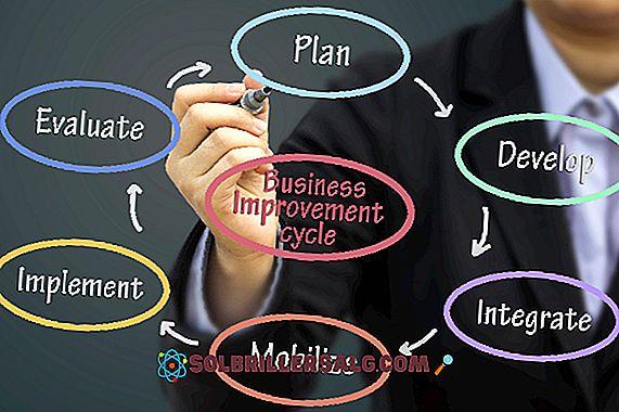 Évaluation de la position: méthodes, avantages, inconvénients et exemples
