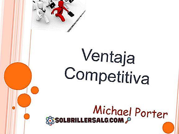 Quel est l'avantage concurrentiel de Michael Porter?