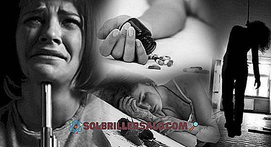 8 Conseguenze della schizofrenia in salute, famiglia e società
