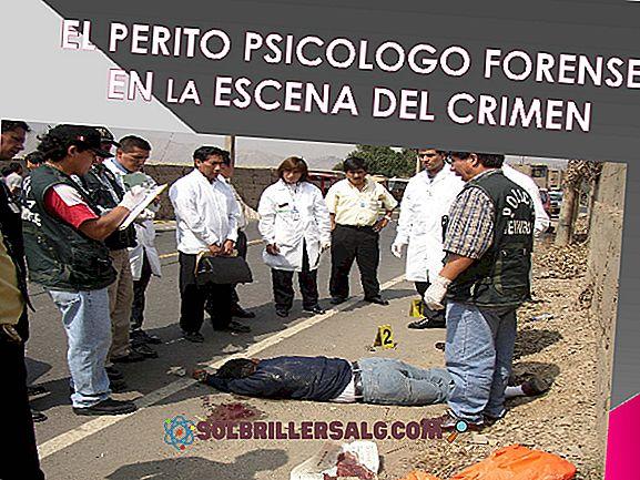 Какво е криминална психология?